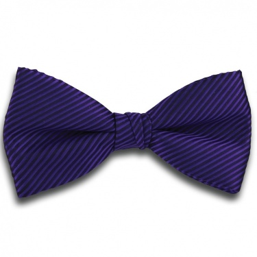 Plain Purple Ready Tied Bow Tie with Diagonal Stripe